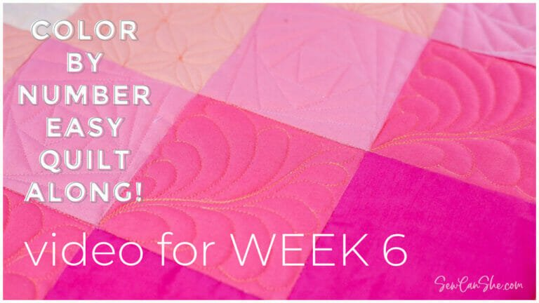 How to Quilt a Square Feather – Color By Number Quiltalong Week 6