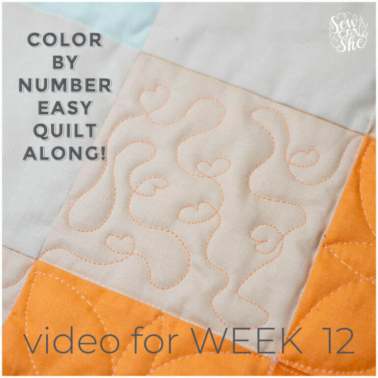 How to Quilt a Baby Heart Meander Quilting Design – Color By Number Quiltalong