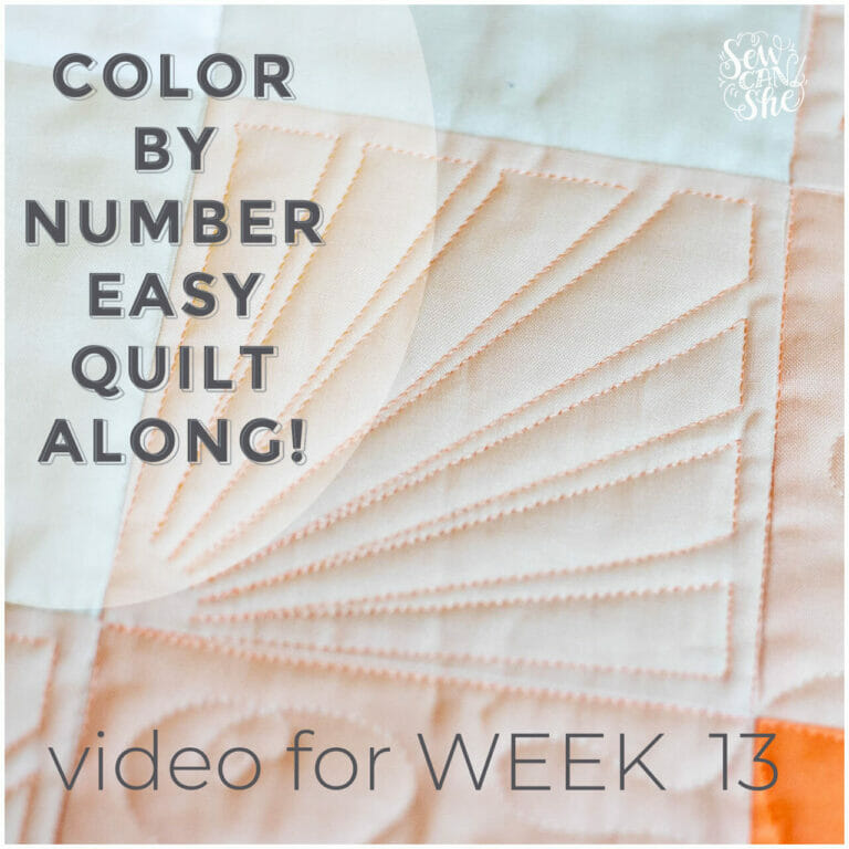 How to Quilt a Sunburst Free Motion Quilting Design – Color By Number Quiltalong