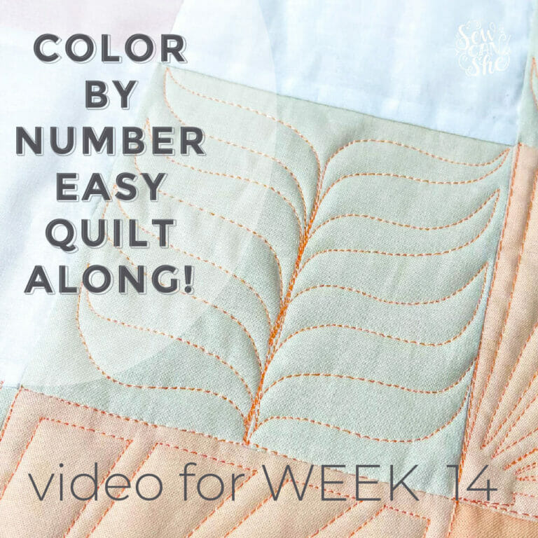 How to Quilt a Free Motion Fern Quilting Design – Color By Number Quiltalong